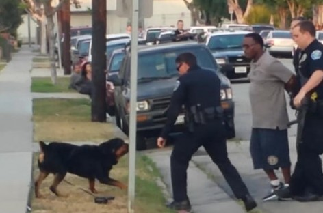 [GRAPHIC VIDEO] Cops Murder Man's Dog After He's Arrested For Recording Cell Phone Video